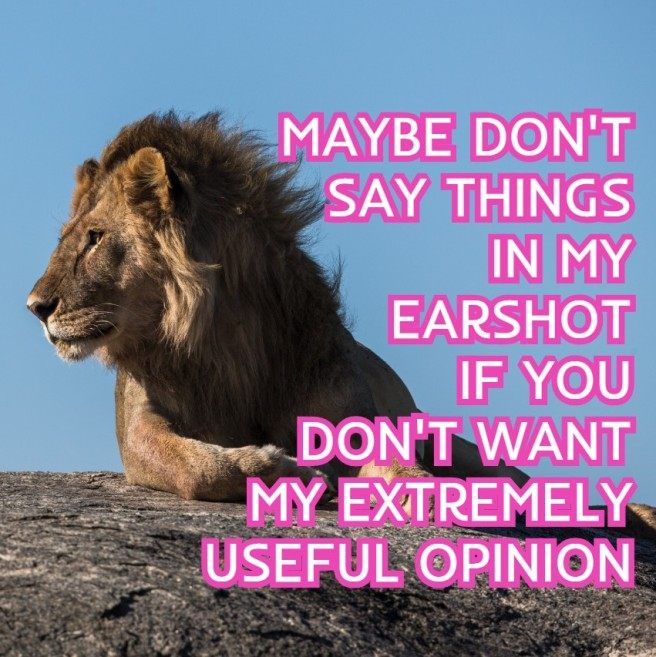 LION-OPINION